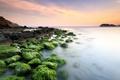 Картинка камни, скалы, небо, водоросли, море