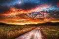 Картинка дорога, поле, небо, облака, Бразилия, Бразилиа, серрадо