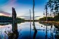 Картинка лес, небо, деревья, озеро, вечер