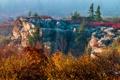 Картинка осень, деревья, туман, скалы