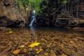 Картинка осень, листья, деревья, камни, скалы, водопад, поток