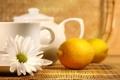 Картинка tea, lemon, ромашка, чашка, чай, лимон, чайник