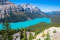 Картинка лес, небо, деревья, горы, озеро