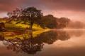 Картинка небо, деревья, пейзаж, тучи, туман, озеро
