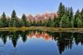 Картинка лес, вода, деревья, горы, озеро, гладь, отражение