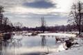 Картинка зима, снег, река, дерево