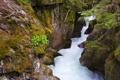 Картинка река, скалы, куст, водопад, поток