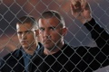 Картинка Вентворт Миллер, Wentworth Miller, Доминик Пёрселл, Michael Scofield, Побег, Dominic Purcell, Prison Break