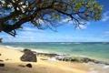 Картинка песок, камни, горизонт, облака, волны, море, дерево