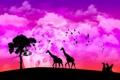 Картинка природа, жираф, африка
