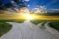 Картинка трава, листья, солнце, облака, деревья, пейзажи, пейзаж. природа