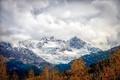 Картинка лес, снег, горы, природа, вершины
