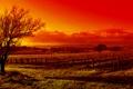 Картинка пейзаж, природа, фото, краса