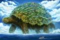Картинка город, черепаха, аниме