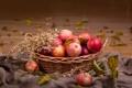 Картинка осень, листья, корзина, яблоки, колосья, фрукты