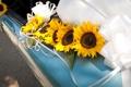 Картинка цветы, автомобиль, свадьба, подсолнечника