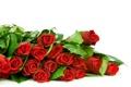 Картинка фото, Цветы, Красный, Розы, Много