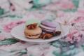 Картинка сладость, печенье, макарун