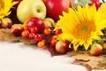 Картинка листья, осень, фрукты, яблоки, подсолнухи