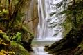 Картинка вода, деревья, камни, скалы, водопад, валуны