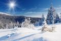 Картинка зима, лес, солнце, снег, пейзаж, природа