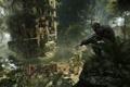 Картинка город, апокалипсис, люди, Crysis 3