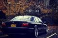 Картинка осень, листья, фары, тюнинг, BMW, Бумер, БМВ