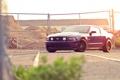 Картинка синий, забор, Mustang, Ford, мустанг, мускул кар, форд