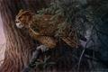 Картинка дерево, арт, филин, Bob Henley, Evening Watch