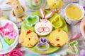 Картинка цветы, яйца, весна, Пасха, flowers, spring, Easter