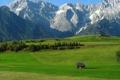 Картинка Природа, Луга, Фото, Горы, Трава, Деревья, Снег