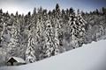 Картинка зима, снег, деревья, дом