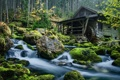 Картинка лес, пейзаж, река, The Mill