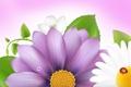 Картинка цветок, коллаж, божья коровка, лепестки, насекомое, открытка