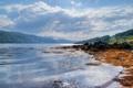 Картинка лес, пляж, водоросли, горы, озеро, камни