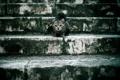 Картинка кошка, фон, ступени