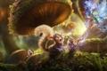 Картинка лес, трава, грибы, сказка, кролик, фея, белка