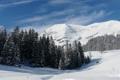Картинка лес, снег, природа, гора