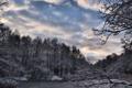 Картинка зима, лес, снег, озеро