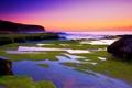 Картинка море, пейзаж, закат, камни, мох
