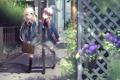 Картинка дорога, цветы, девочки, арт, vocaloid, школьницы, yuzuki yukari