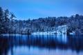 Картинка деревья, зима, Glens Falls, снег, Haviland Cove Park, парк, озеро