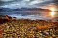 Картинка море, закат, горы, камни, побережье, Норвегия, Hardangerfjorden