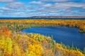 Картинка осень, лес, деревья, озеро, Мичиган, США