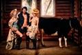 Картинка девушки, мужик, корова, колхоз