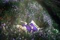 Картинка девушка, цветы, настроение