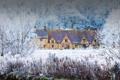 Картинка зима, иней, снег, деревья, дом, Англия, Глостершир