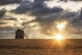 Картинка пейзаж, мельница, колосья, поле