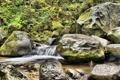 Картинка листья, река, ручей, камни, каскад, кусты
