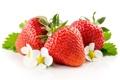 Картинка листья, макро, ягоды, клубника, цветки